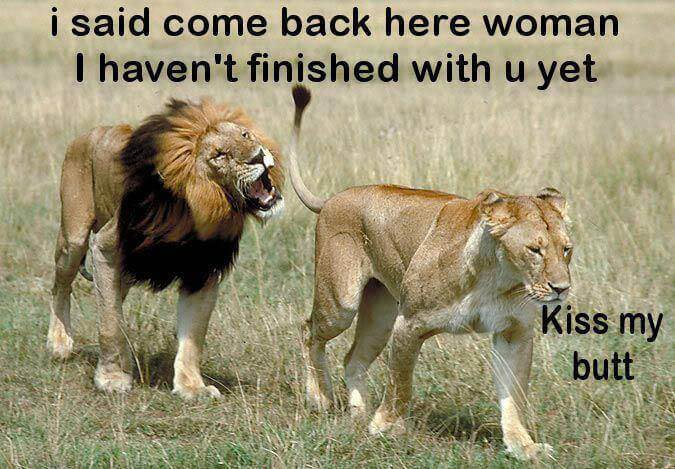 Ženska kam greš