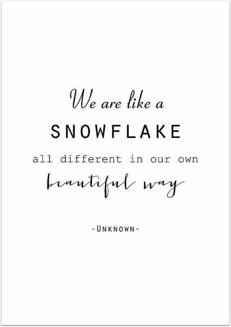 Kot snežinke